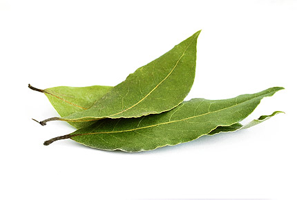 Гайморит: лечение в домашних условиях лавровым листом